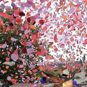 Tárrega Francisco - Variaciones sobre El Carnaval de Venecia de Paganini